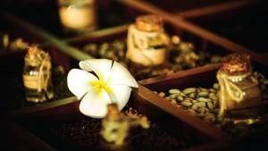 palm_garden_beach_resort_spa_herbal_hoi_an